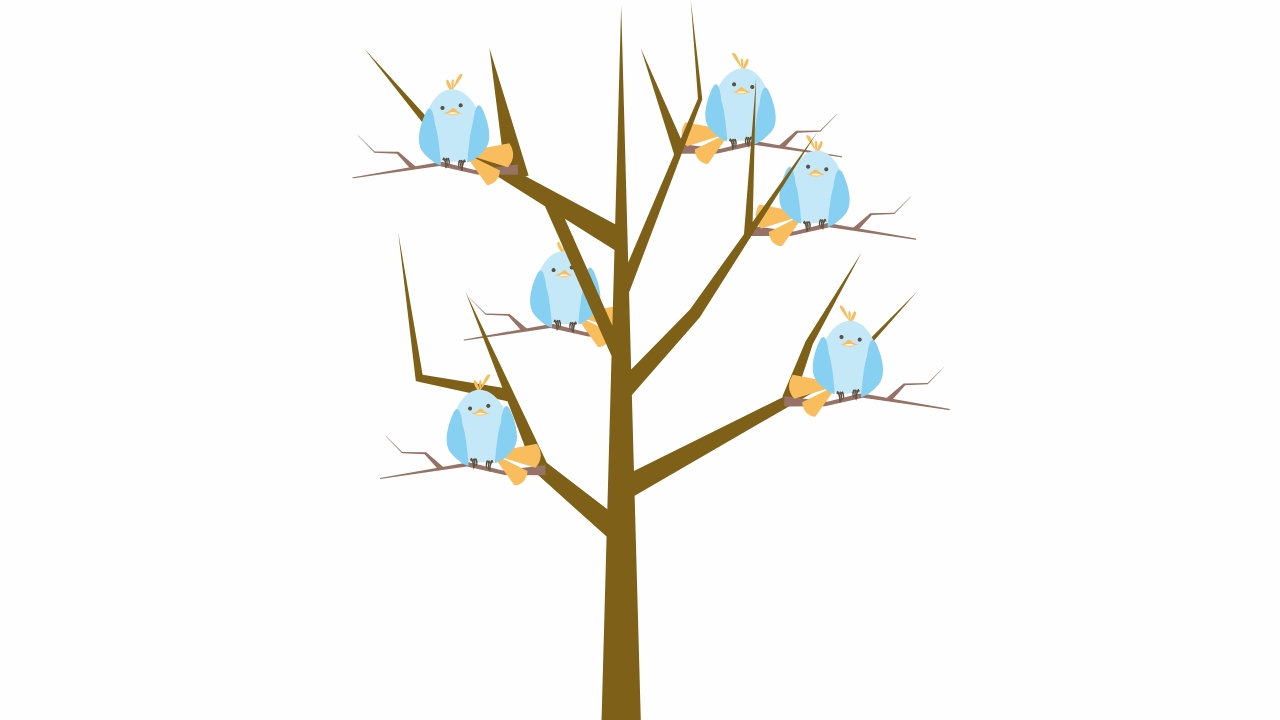 birds sitting on a leafless tree